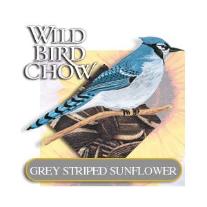 WildBirdGreyStripedSunflower