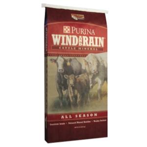 web_windrainallseason